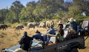 My Trip to South Africa | Exploring Capetown and a Safari in Kruger National Park