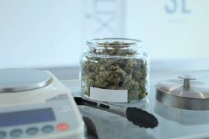 Setting Up Your Own Dispensary: A Guide