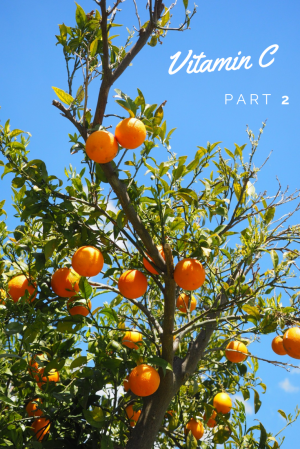 The truth about Vitamin C in skincare (part 2)