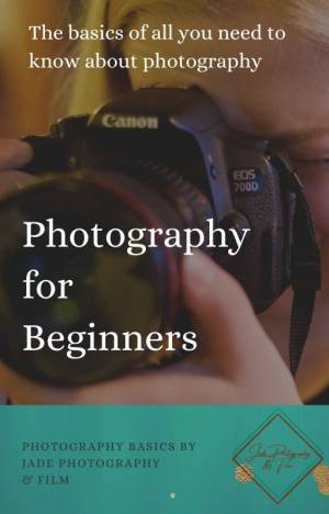 Photography Basics for Beginners!