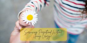 Surviving parenthood without going crazy