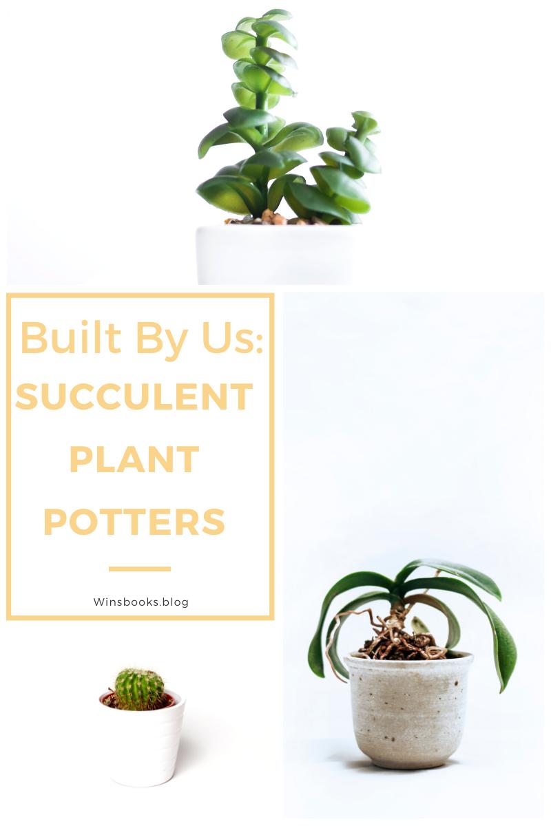 Built By Us: Succulent Plant Potters